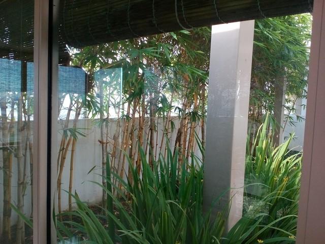 ban-penhouse-the-vista-view-song-gia-re (3)